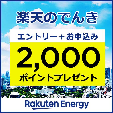 全プラン対象!エントリー+まちでんきお申込みで2,000ポイントプレゼント!