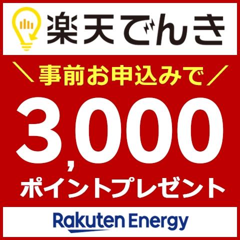 基本料金0円!事前お申込みで3,000ポイントプレゼント実施中!