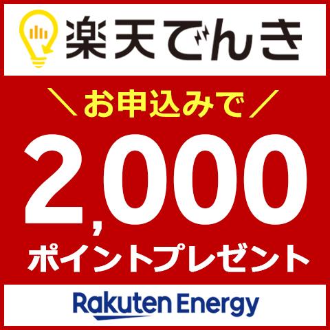 基本料金0円!お申込みで2,000ポイントプレゼント実施中!