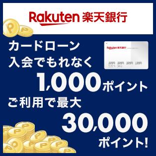 楽天銀行カードローン_常設プログラム