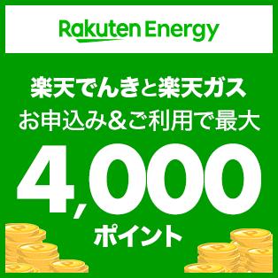 楽天でんき・ガスお申込み&ご利用で最大4,000ポイント!