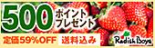 500ポイント付き!【送料込み】豪華10品おためしセット!